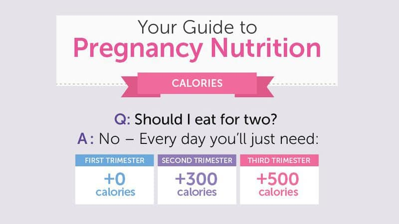 Infographic: Your guide to Pregnancy Nutrition